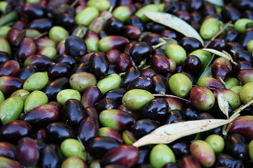 olives www.talkoftomatoes.com