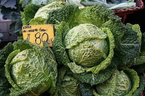 cabbage www.talkoftomatoes.com