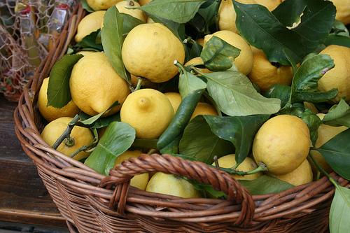 lemons www.talkoftomatoes.com
