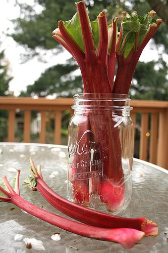 rhubarb www.talkoftomatoes.com