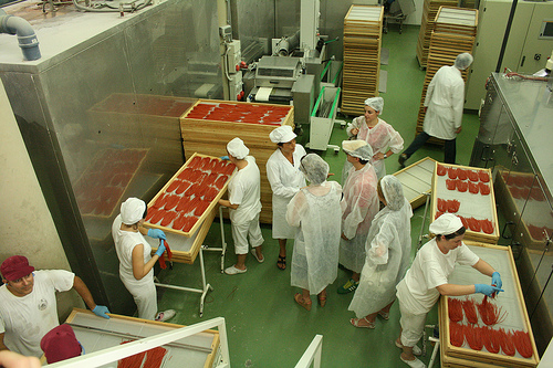 pasta factory www.talkoftomatoes.com