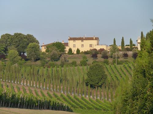 tuscan villa www.talkoftomatoes.com