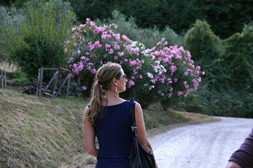 janelle www.talkoftomatoes.com
