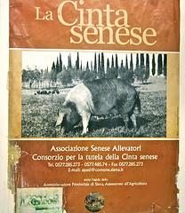cinta senese www.talkoftomatoes.com