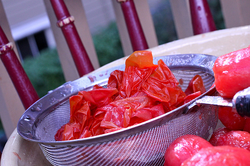 peeling tomatoes www.talkoftomatoes.com