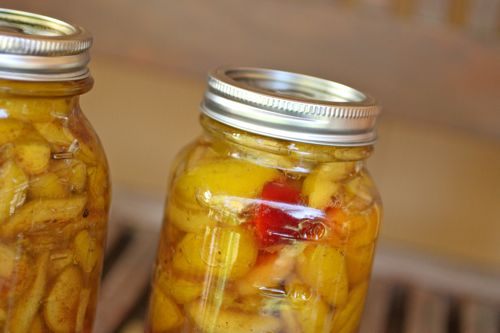 home canning yellow plums @talkoftomatoes