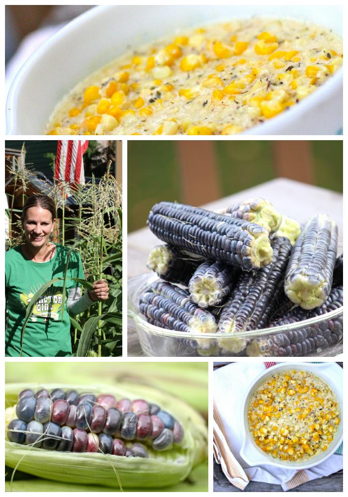 creamed corn recipe talkoftomatoes.com