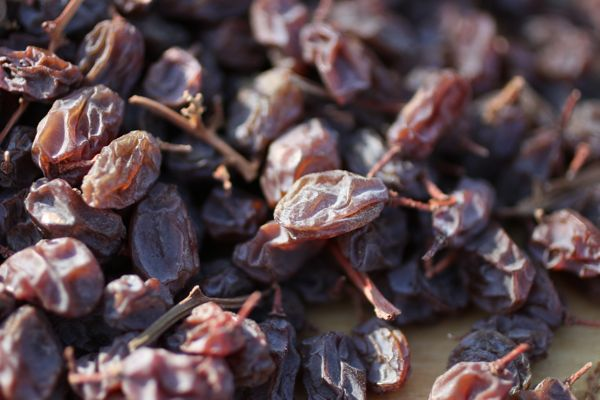 close-up raisins