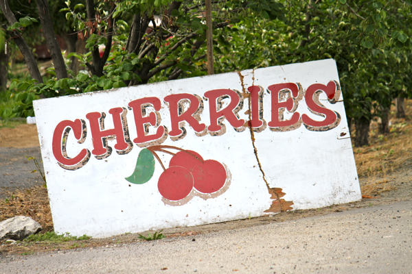 sweet cherries - 17