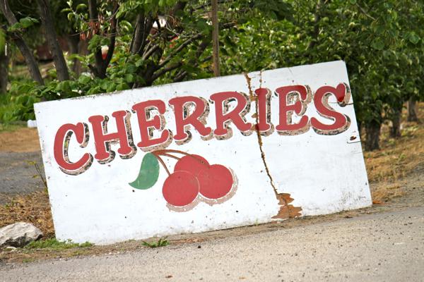 sweet cherries - 17