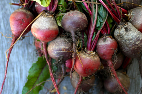 beets - 3