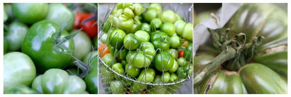 green tomato recipes