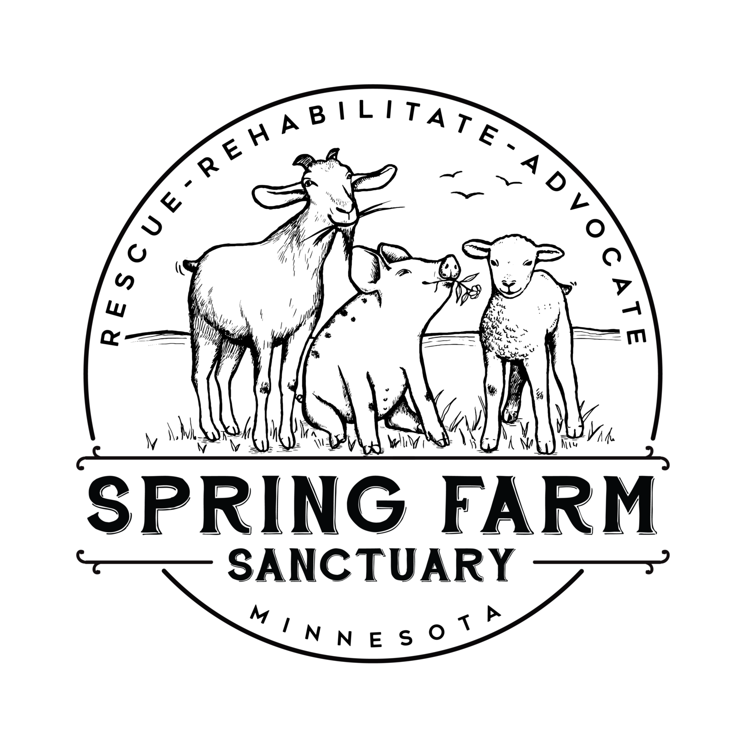 Spring Farm Sanctuary