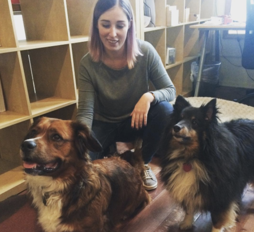 Me with a few of our office pups, Maisie (mine) and Obi