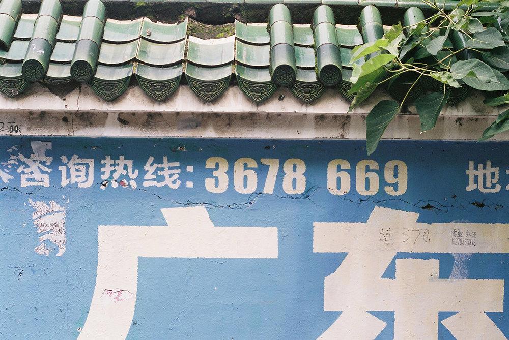 19726551056_a9c2417c12_h.jpg