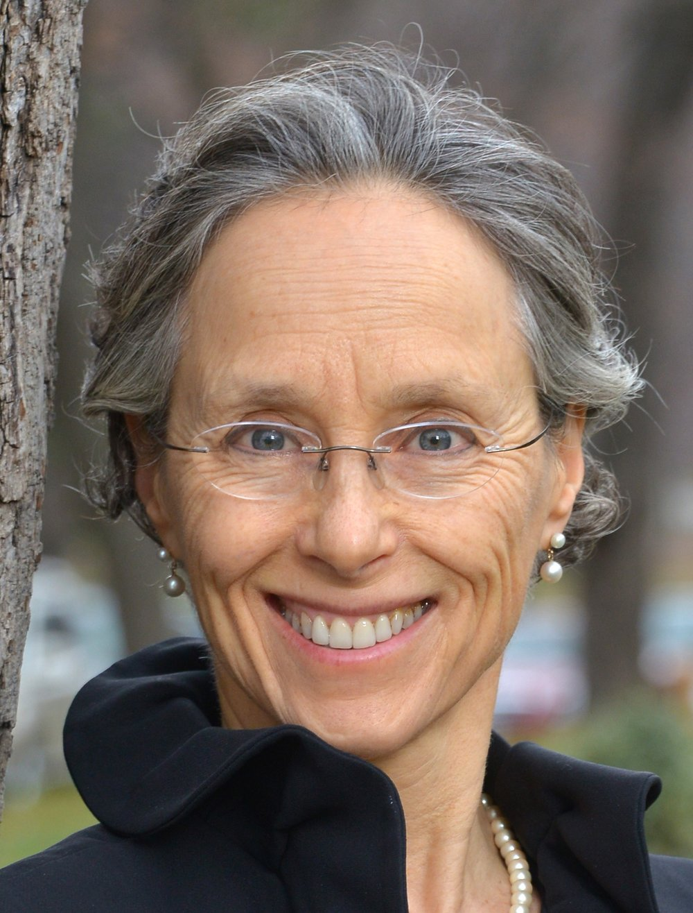 Dianne Saxe - Dr. Dianne Saxe is the Environmental Commissioner of Ontario, a tough but fair watchdog over government compliance with the Environmental Bill of Rights. Prior to her appointment in 2015, Commissioner Saxe was one of Canada's most respected environmental lawyers. A Certified Environmental Law Specialist, Commissioner Saxe was recognized in every Canadian and international legal rating service, including acknowledgement as one of the world's top 25 environmental lawyers by Best of the Best, 2008 and as Best Lawyers' first Environmental Lawyer of the Year for Toronto. Her five-year appointment as Environmental Commissioner will be focused on serving the Ontario Legislature, improving the effectiveness of the Environmental Bill of Rights and catalyzing better environmental, energy and climate outcomes, for and with the people of Ontario.