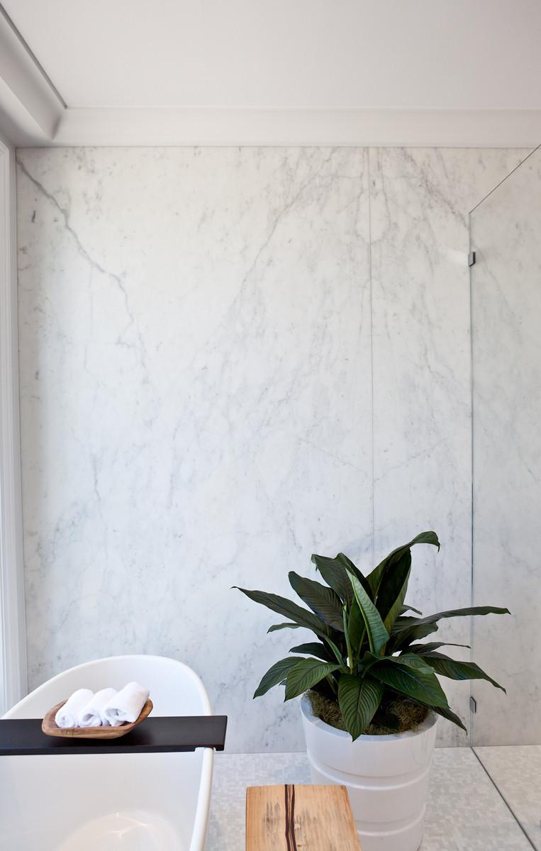 bathroom, tub, modern, shower, bath, indoor plant, house plant