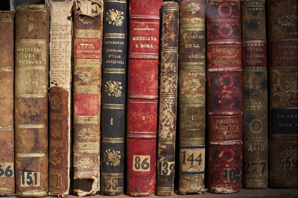 literary arts -
