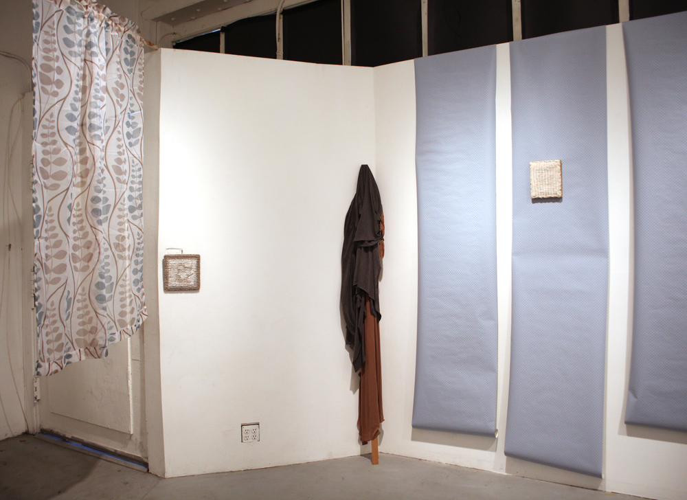0 Some Insides (install shot, costume).jpg