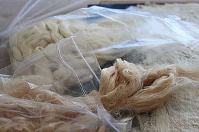 Silk Fiber that I start with.