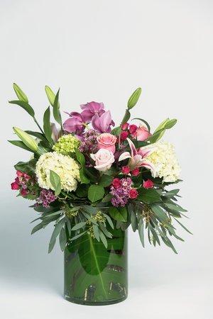 Blooms bod 548 nj6a0087g mightylinksfo