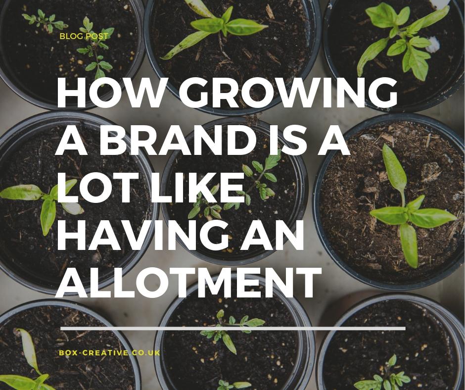brand growth allotment_IG.jpg