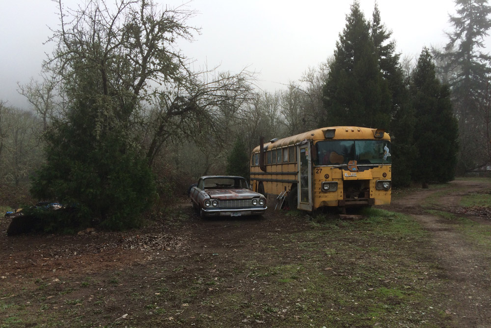 CAR_CAR_BUS_FOREST.jpg