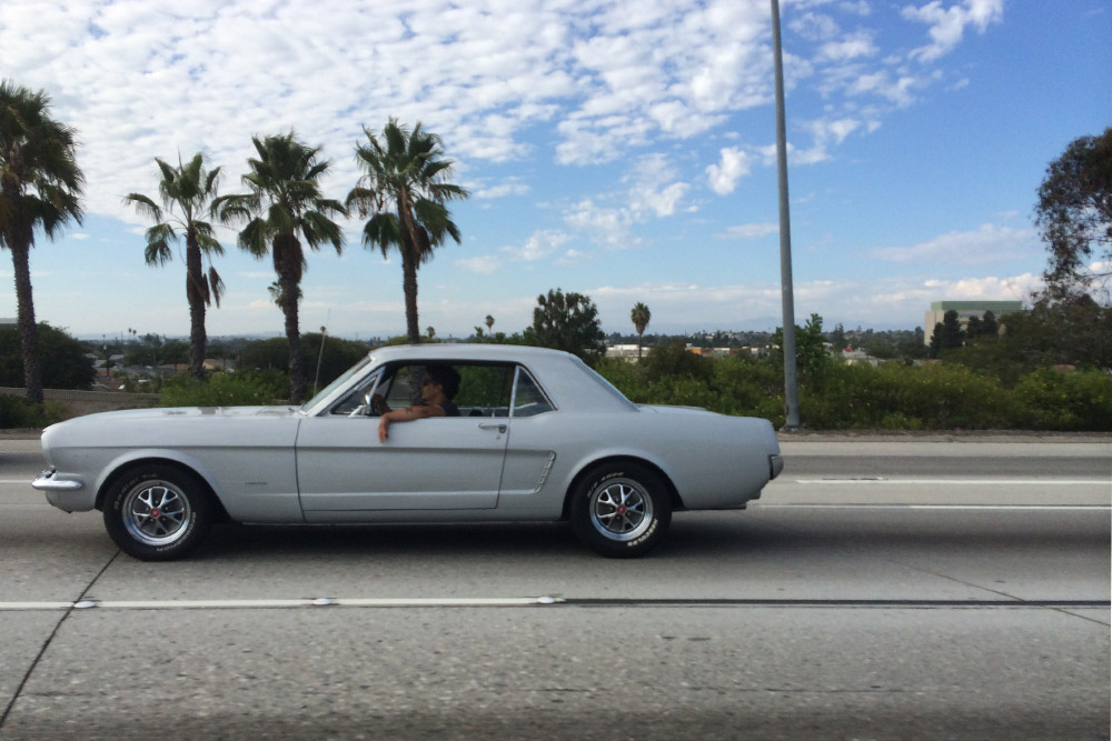 CAR_MUSTANG_WHITE_FREEWAY.jpg