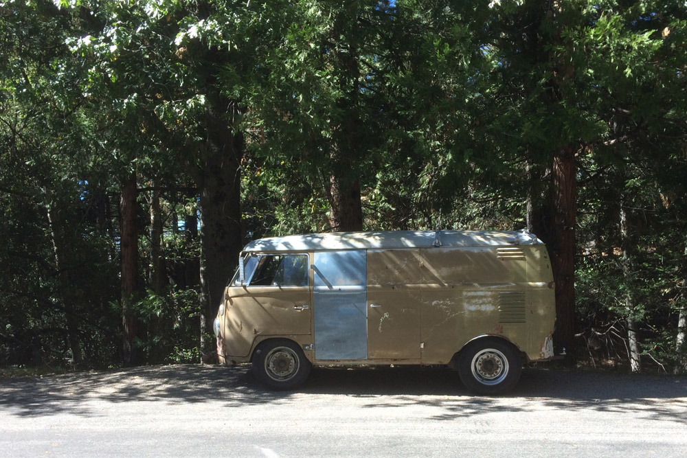 CAR_PATCHED_KOMBI_FOREST.jpg