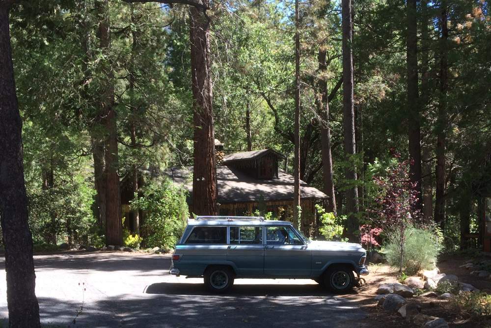 CAR_WAGONEER_FOREST.jpg