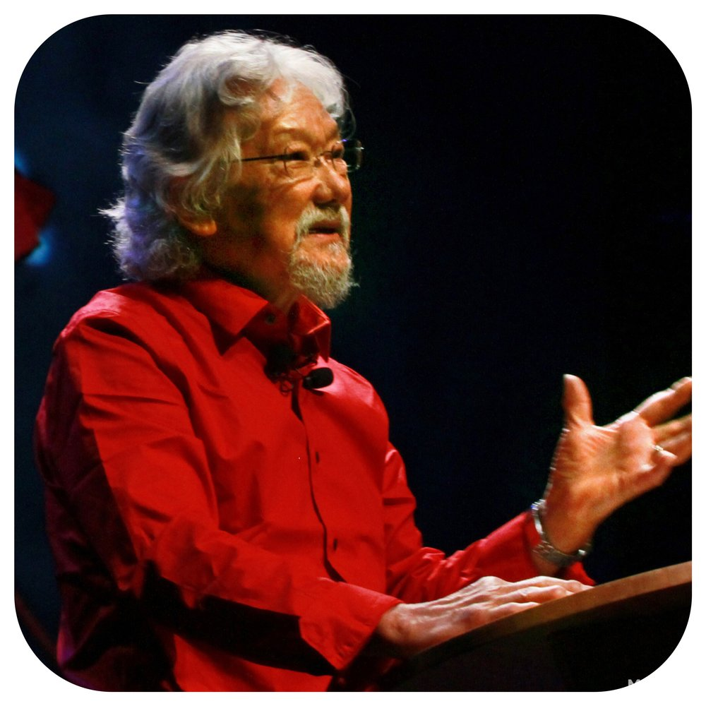 Healthy Living Now - David Suzuki - Dr. David Suzuki - The David Suzuki Foundation - Contributors - Meet Our Team.jpg