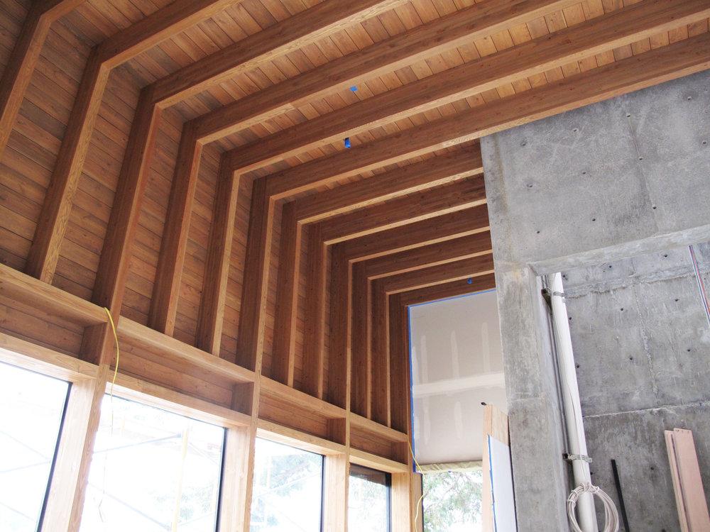 living_room_ceiling.jpg