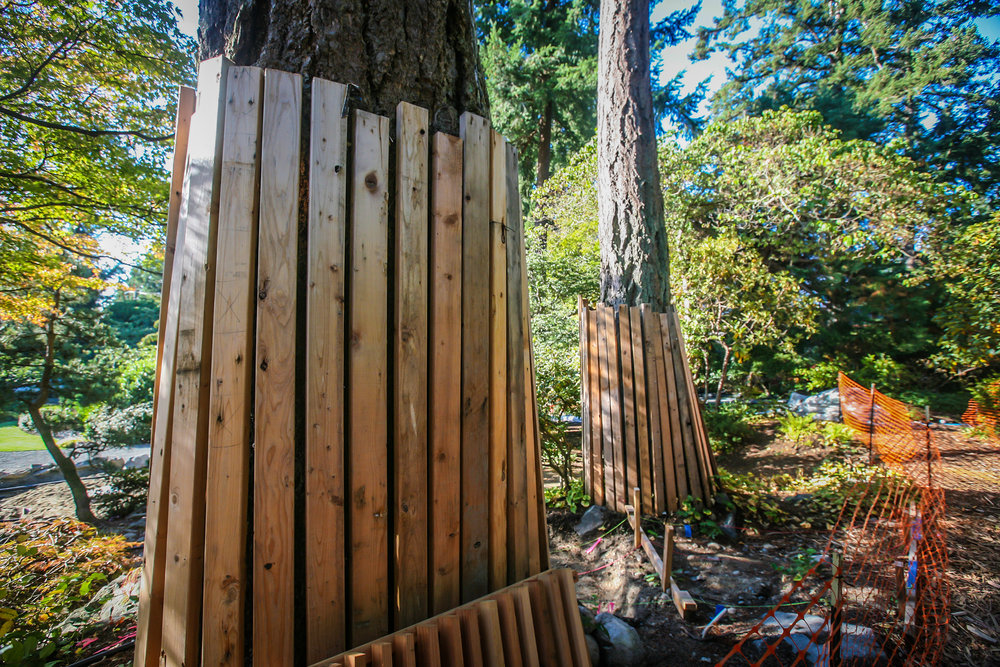 Tree protection from salvaged wood