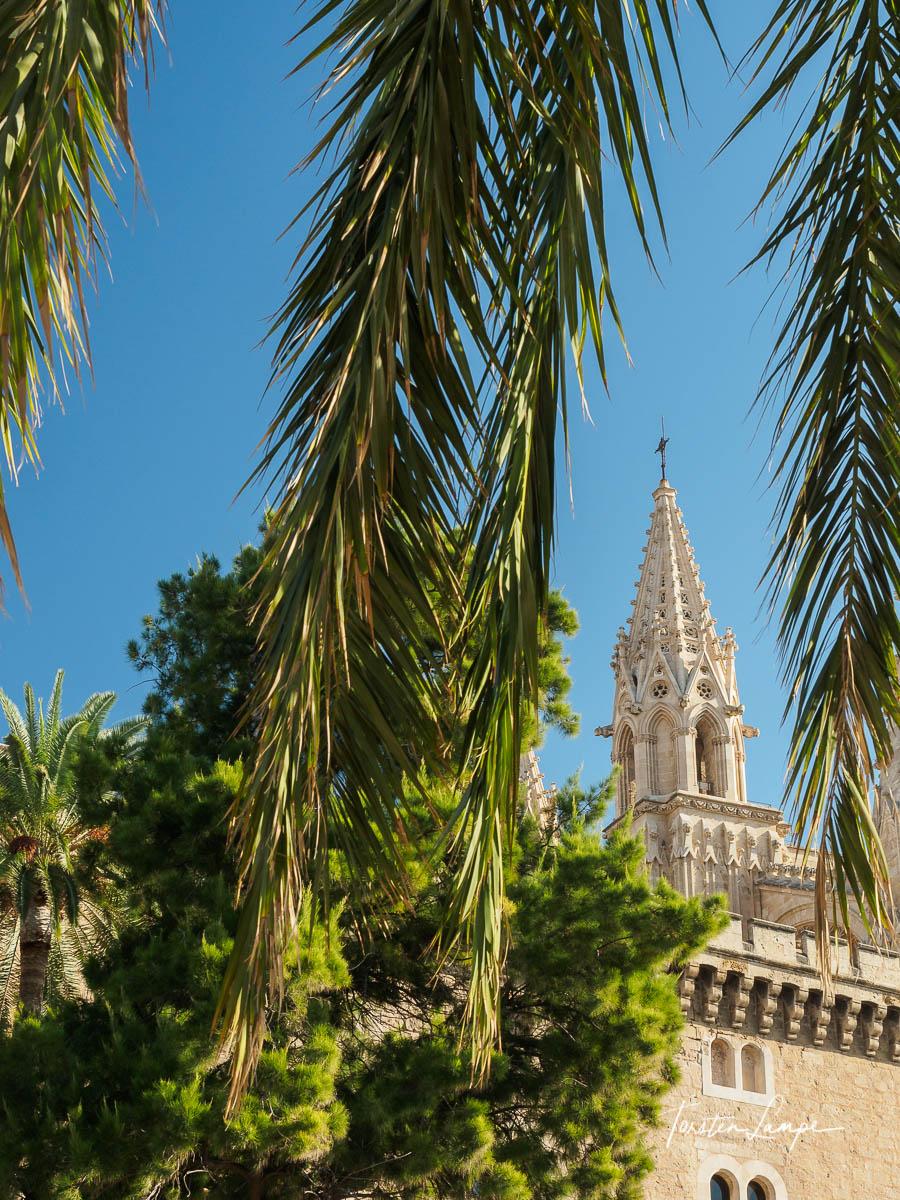 Cathedrale de Palma