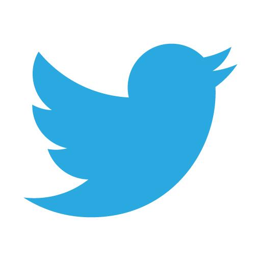 Twitter (Silver)