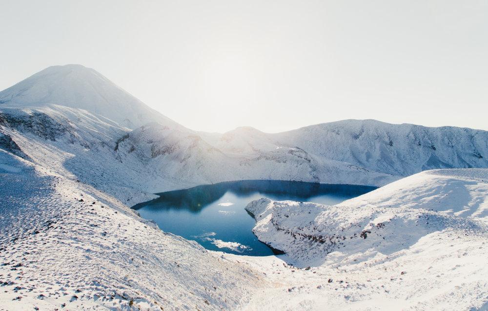 Tama in Snow (1 of 1).jpg