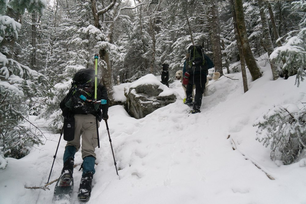 M1_0013_Mt Moosilauke Duo_2016-12-22.jpg