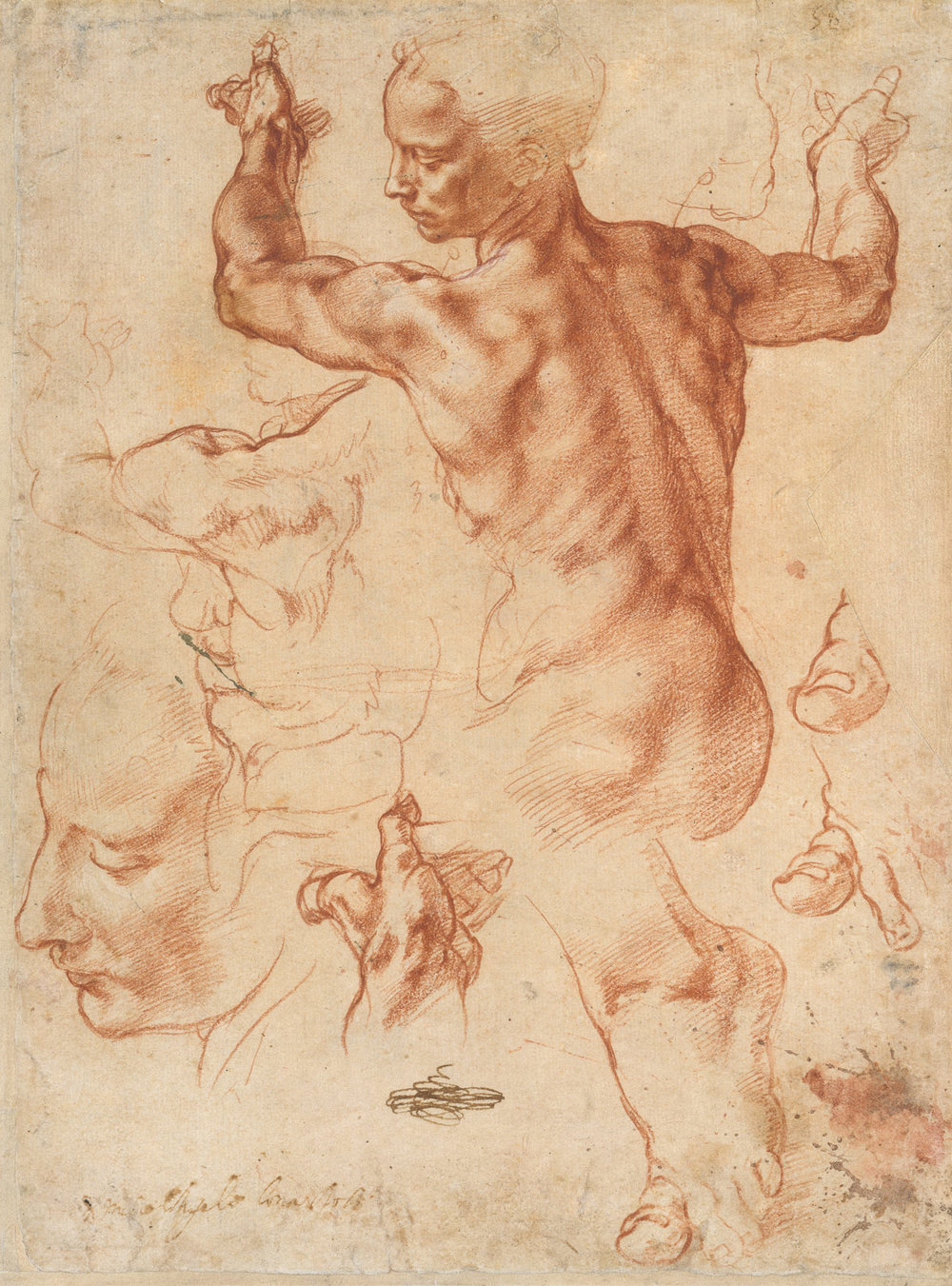 Michelangelo, Studies for the Libyan Sibyl, ca. 1510–11, Metropolitan Museum of Art, New York