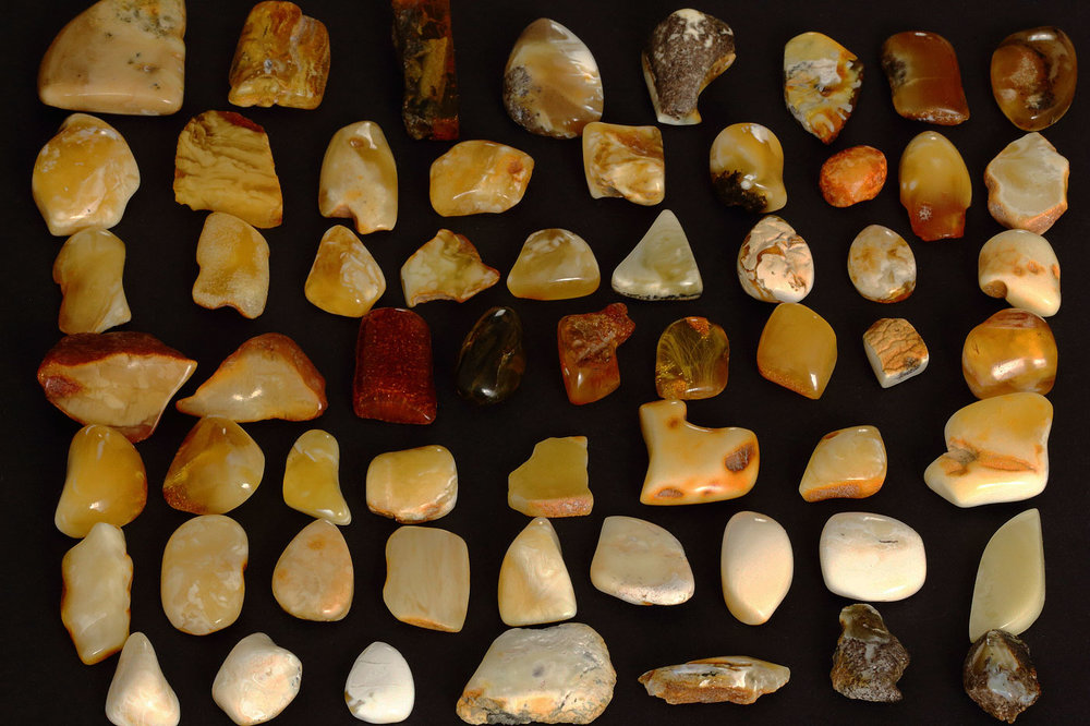 Copy of Baltic amber samples with varying color and clarity. Image courtesy of Wikimedia Commons user By PrinWest Handelsagentur J. Kossowski - Own work, CC BY 3.0