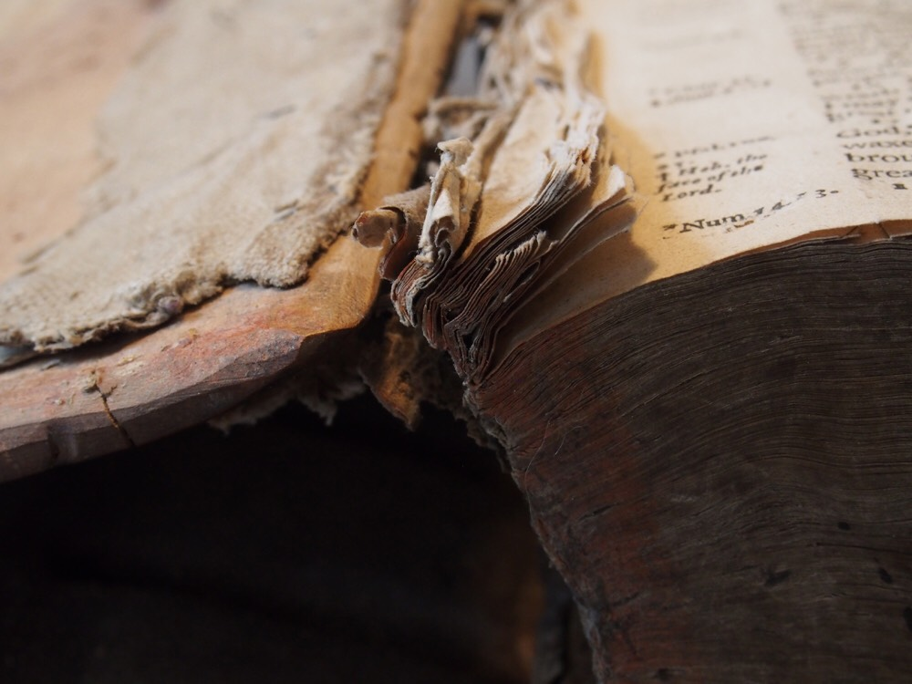 Does your family Bible look like this? I'd recommend calling a conservator.