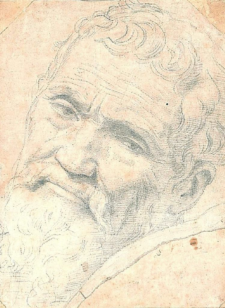 Daniele de Volterra, Portrait of Michelangelo, 1533