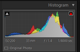 Example of a histogram in Adobe Lightroom Classic