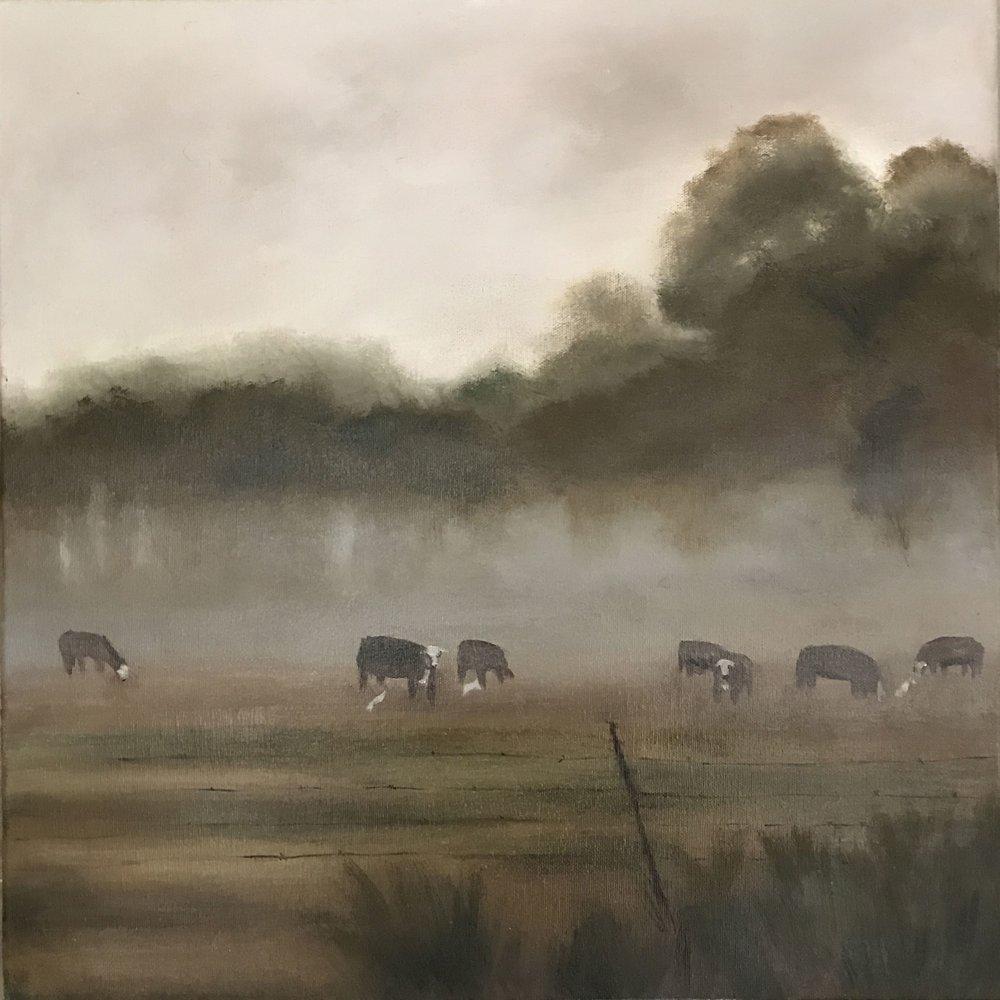Foggy Morning 18x18.jpg