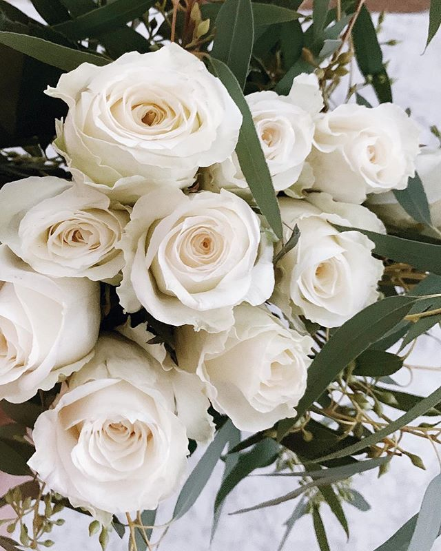 White roses and eucalyptus will forever be my favorite combination. Feeling ready for the week with a fridge full of groceries and a few flower arrangements around the apt.
