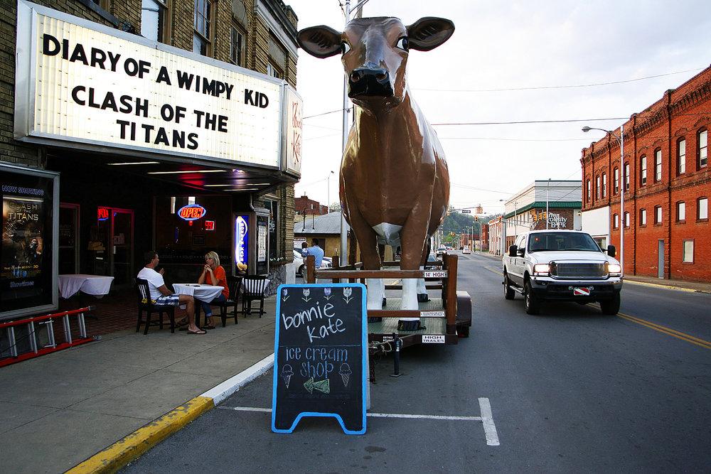 Cow1_A1M4659.jpg