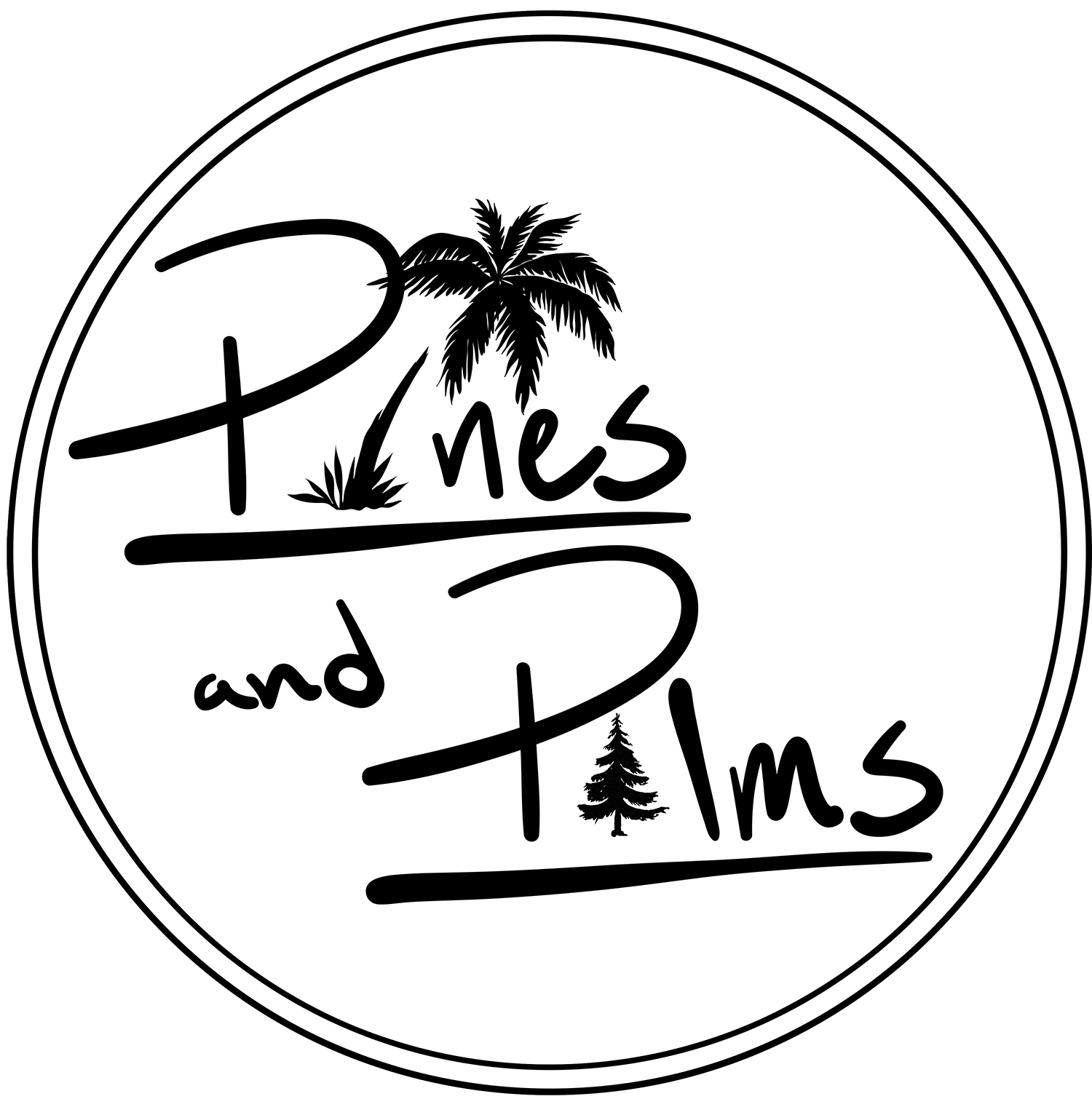 pines and palms animation studio