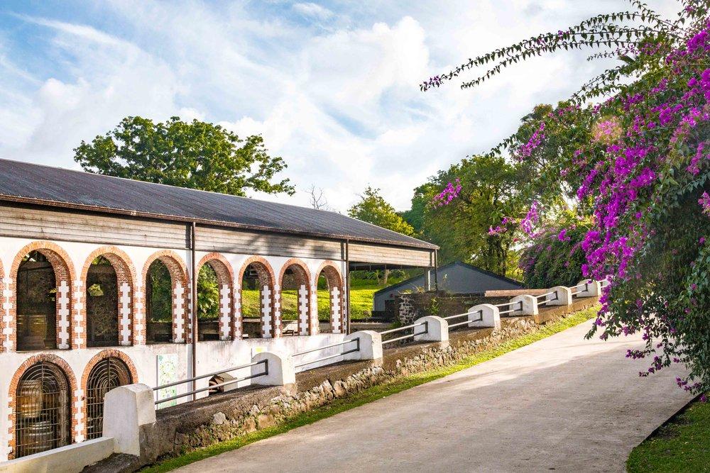 Martinique, Habitation Saint-Etienne, HSE : le chai de vieillissement