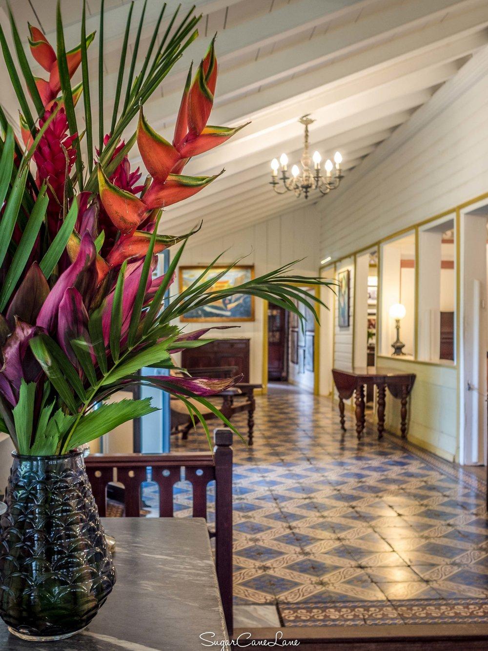 Martinique, Habitation Clément : un balisier dans le séjour