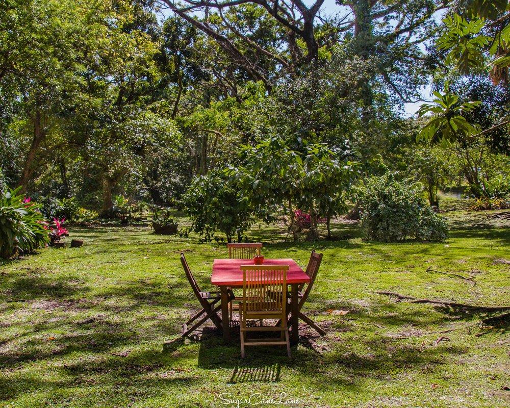 Martinique, habitation Ceron, table de jardin
