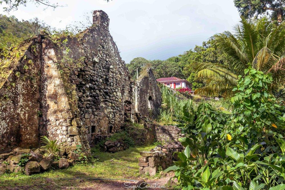 Martinique, habitation Ceron, ruines de la purgerie